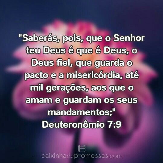 Pin De Daisy Almeida Em God Deus Bible