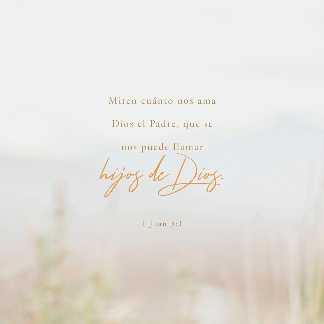 1 Juan 3 1 Mirad Cual Amor Nos Ha Dado El Padre Para Que Seamos