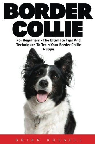 Border Collie For Beginners The Ultimate Tips And Techniques To