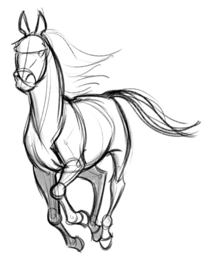 Galloping horse sketches - photo#42