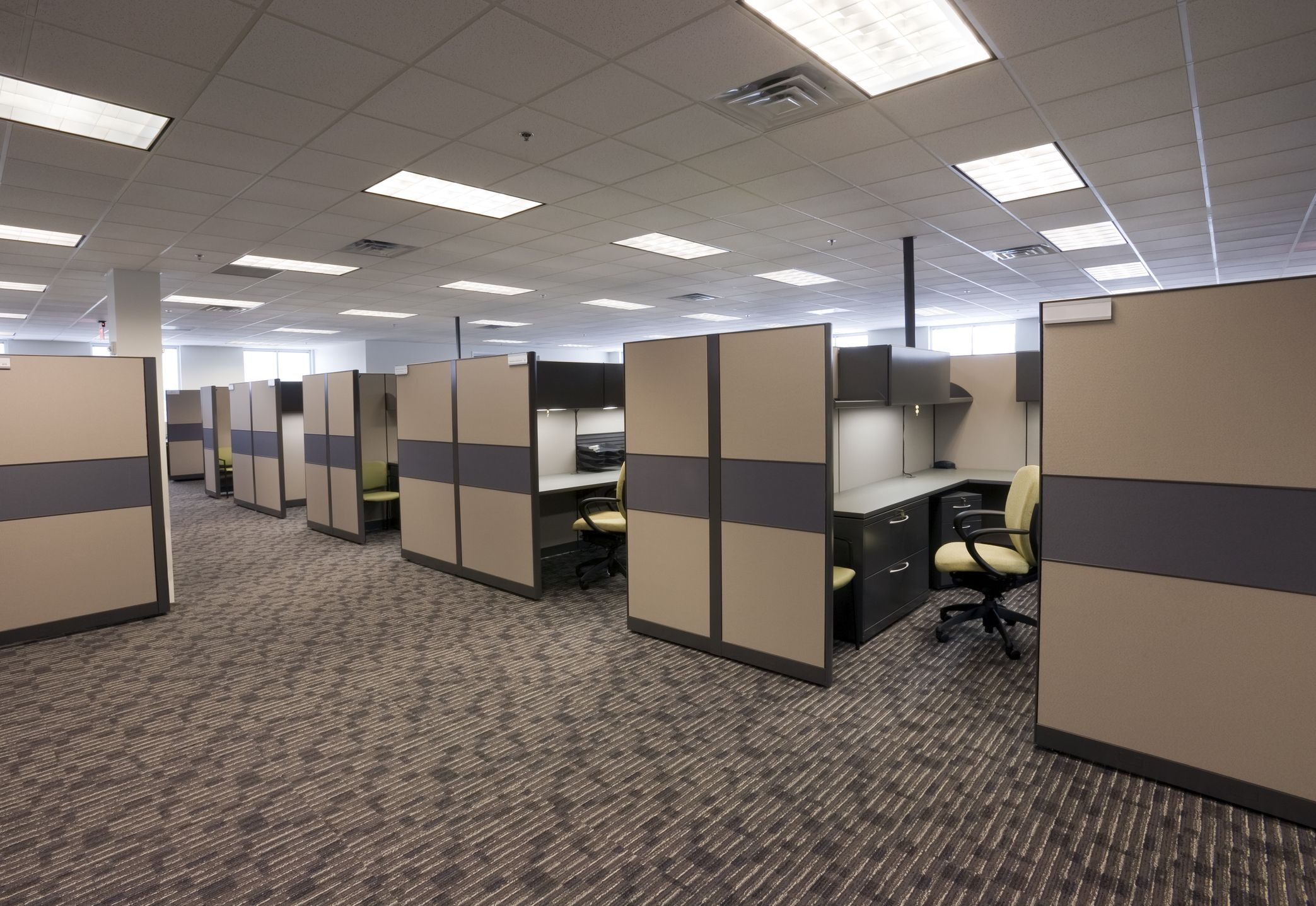1980s Office Cubicles How To Clean Carpet Commercial Carpet