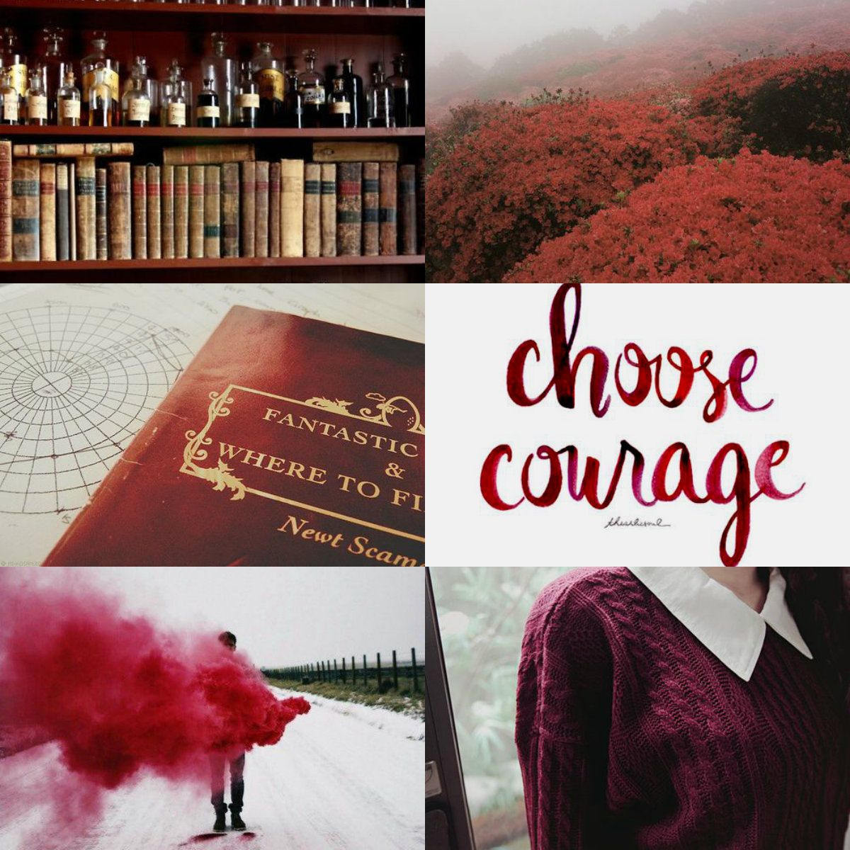 James Potter Libros Harry Potter Aesthetics Gryffindor 2 2 Until The Very