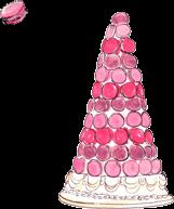 20+ Macaron Tower Laduree
