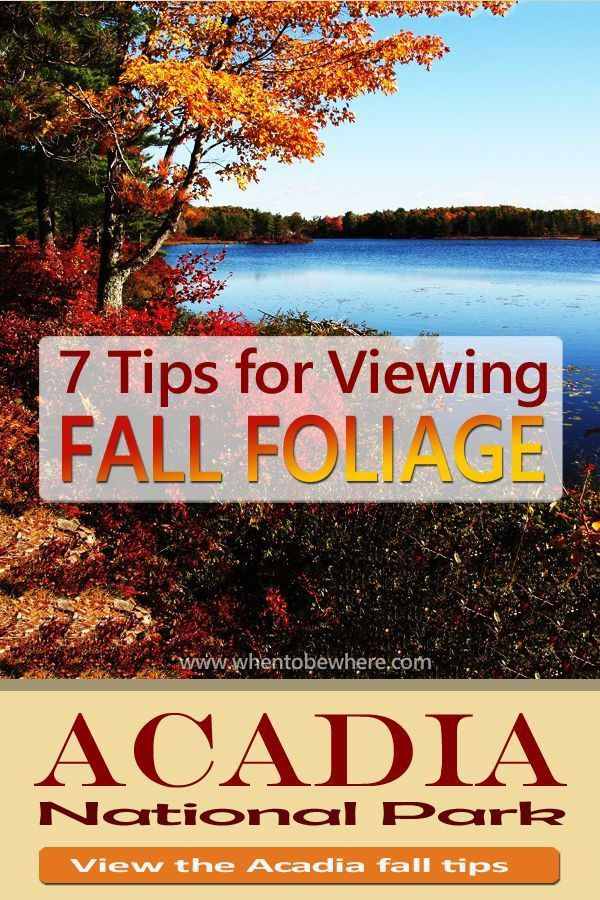 Acadia National Park: Tips - Hiking - Season Guide #autumnfoliage