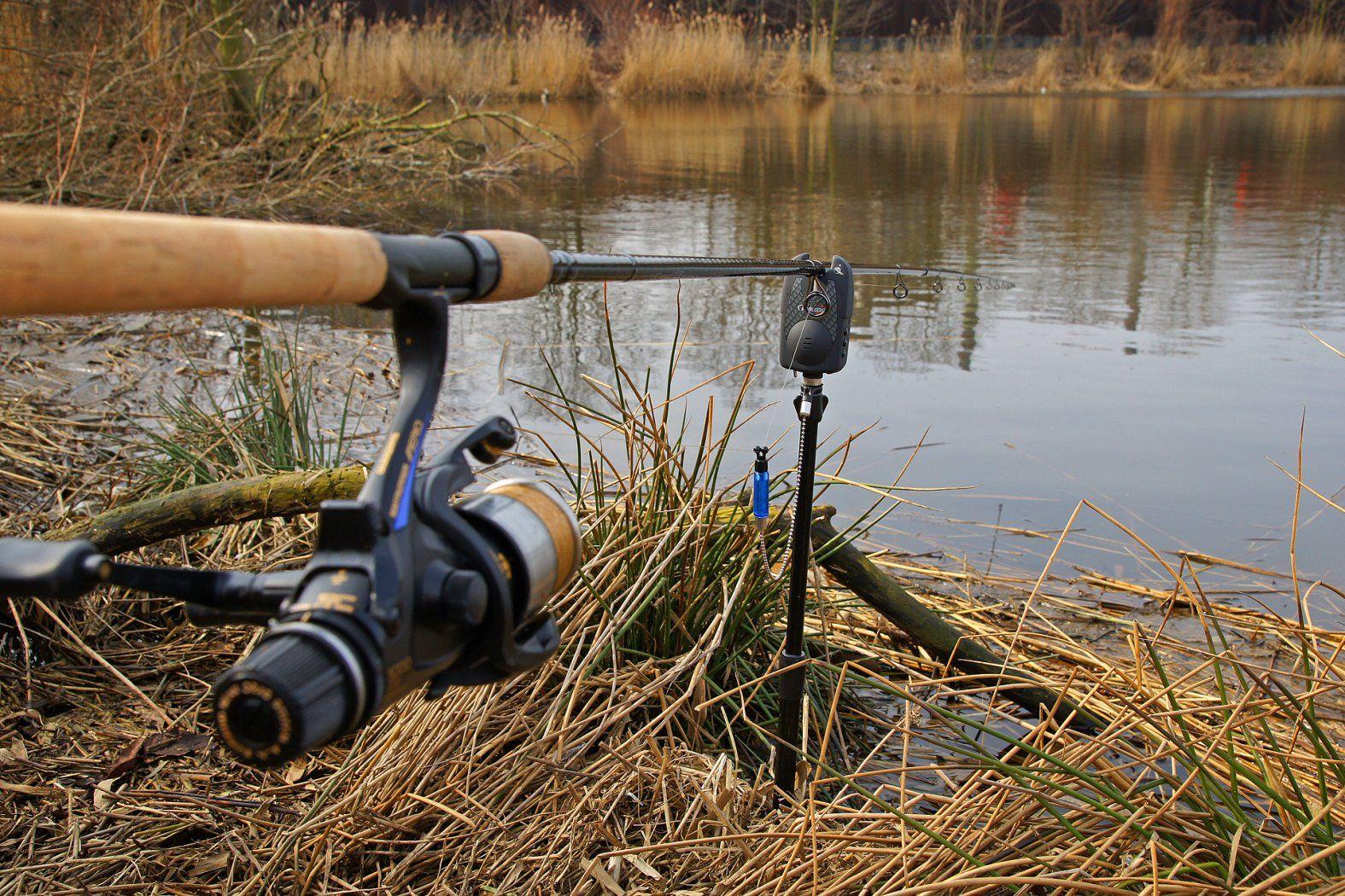 Eine haarige Sache | Angeln, Aal angeln, Aal