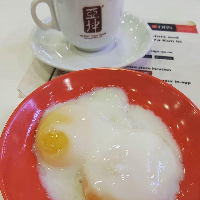 早起的鸟儿有蛋吃  早起的鸟儿有蛋吃