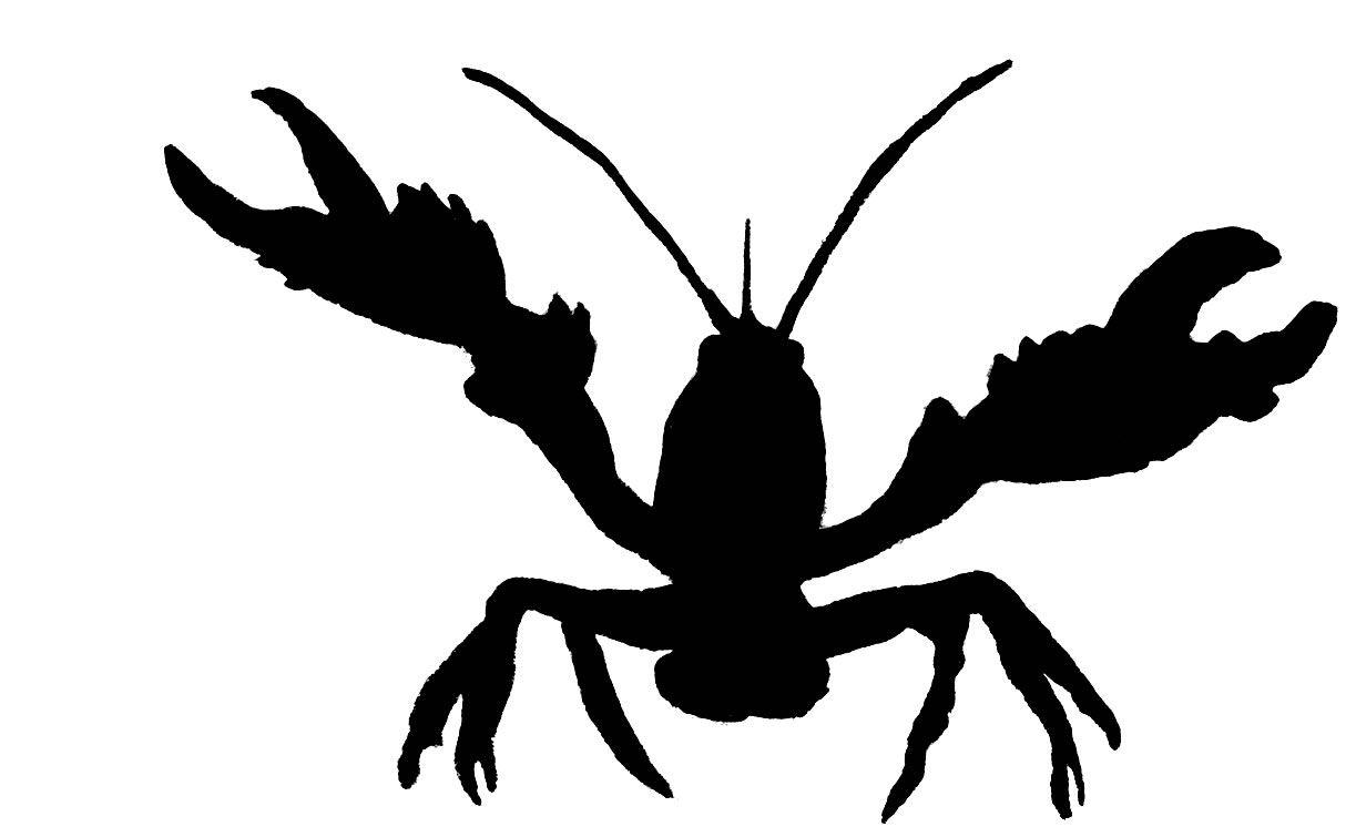 crawfish clip art black and white clipartfest birds animals rh pinterest com crawfish clip art vector free download crayfish clip art