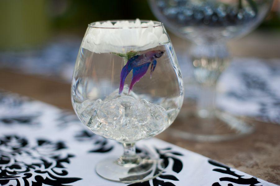 Brittany & Levi \'s Beautiful DIY Backyard Wedding   Betta fish ...