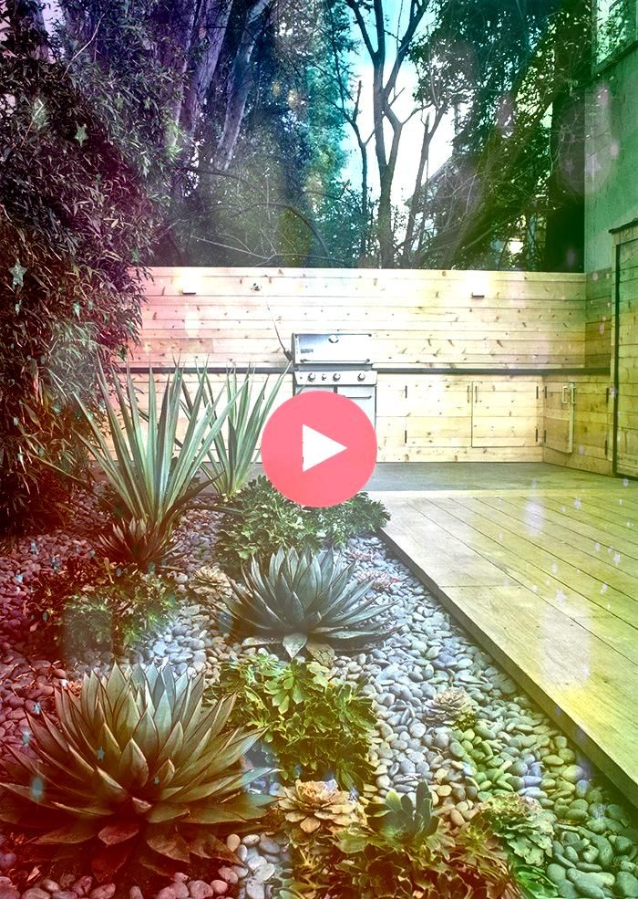 to Make Your Garden WaterFree This is what I want on the west side of my house But its full sun Anyone know who these kinds of plants do here in UtahHow to Make Your Gard...