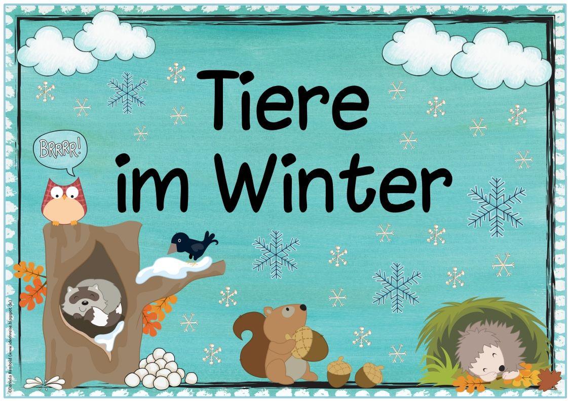 """themenplakat """"tiere im winter"""" das nächste plakat zum"""