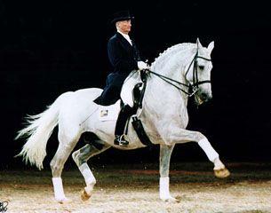 KWPN stallion Aktion