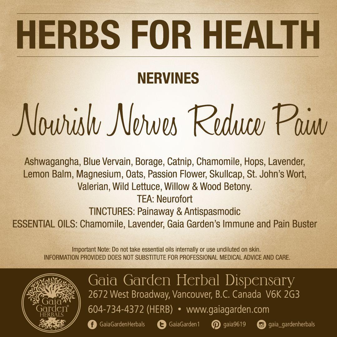Pin On Natural Medicine