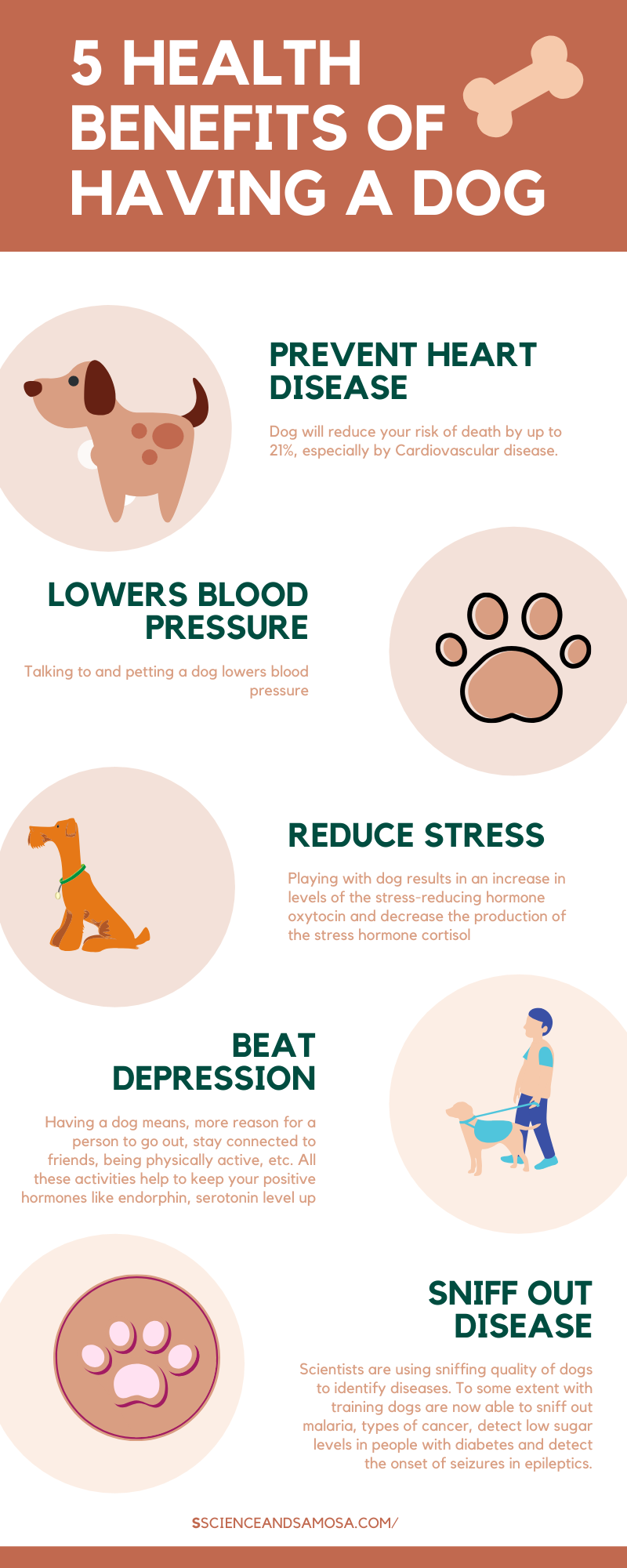 Dog Owner S You Have One More Reason To Rejoice Cardiovascular Disease Cardiovascular Risk Coronary Heart Disease