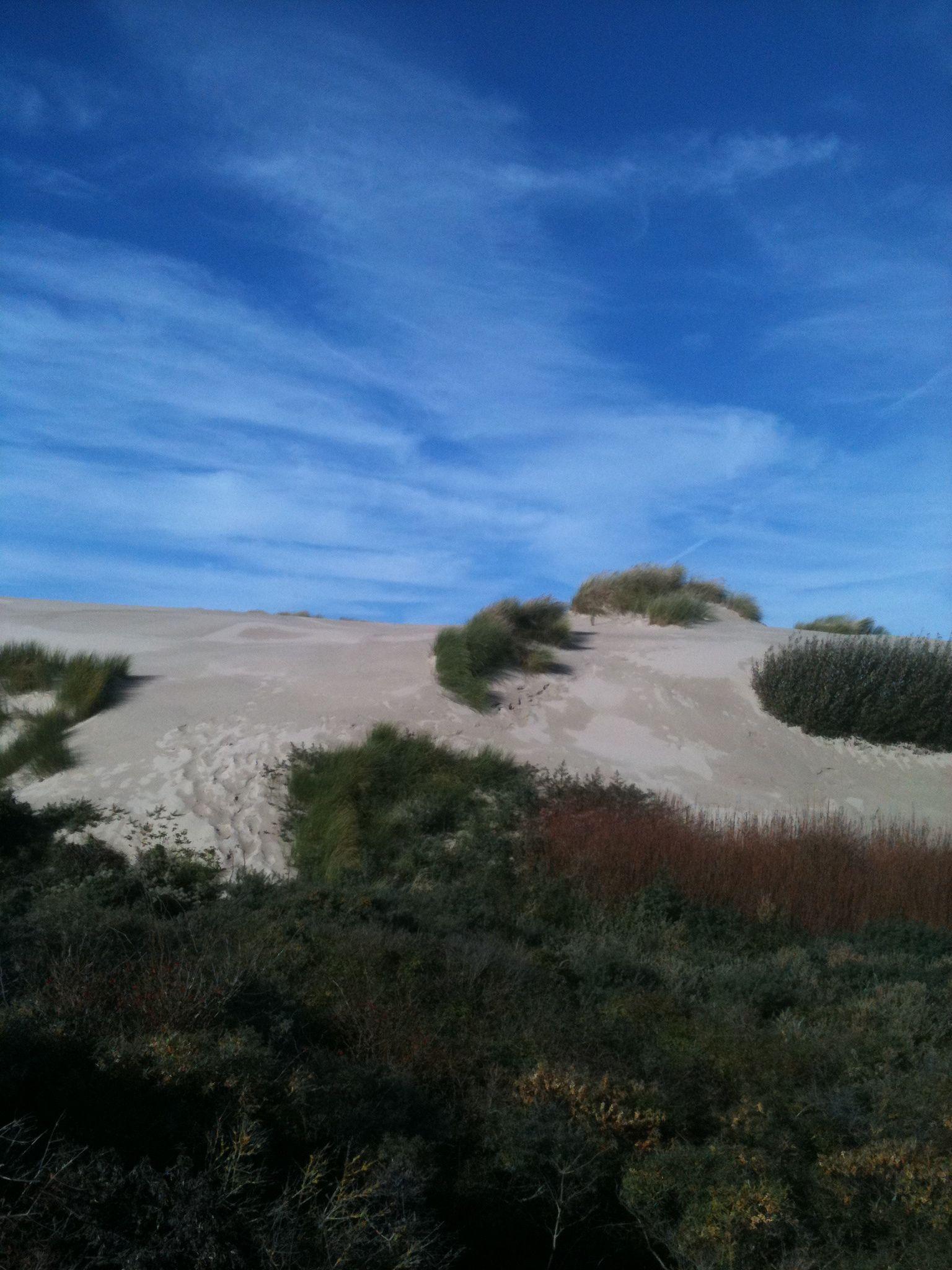 blue sky and dunes (avec images) France, Calais