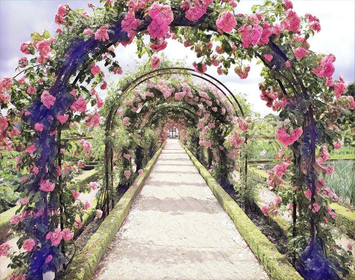Picsart Background Garden Hd FreeToEdit Ftelandscape ...