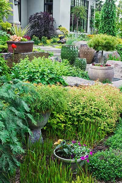 Four Season Garden Star Garden Design Amazing Gardens