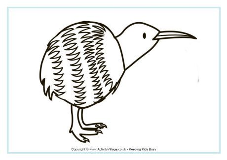 Kiwi Colouring Page 2 Bird Coloring Pages Coloring Pages