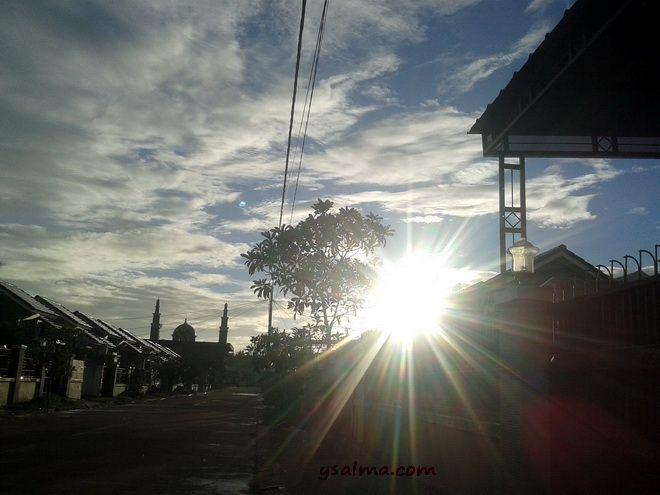 matahari pagi matahari bercahaya kebun
