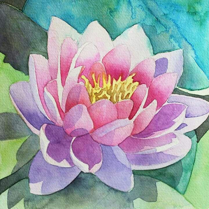 Watercolour Lily Flower Art Flower Painting Flower Art Drawing