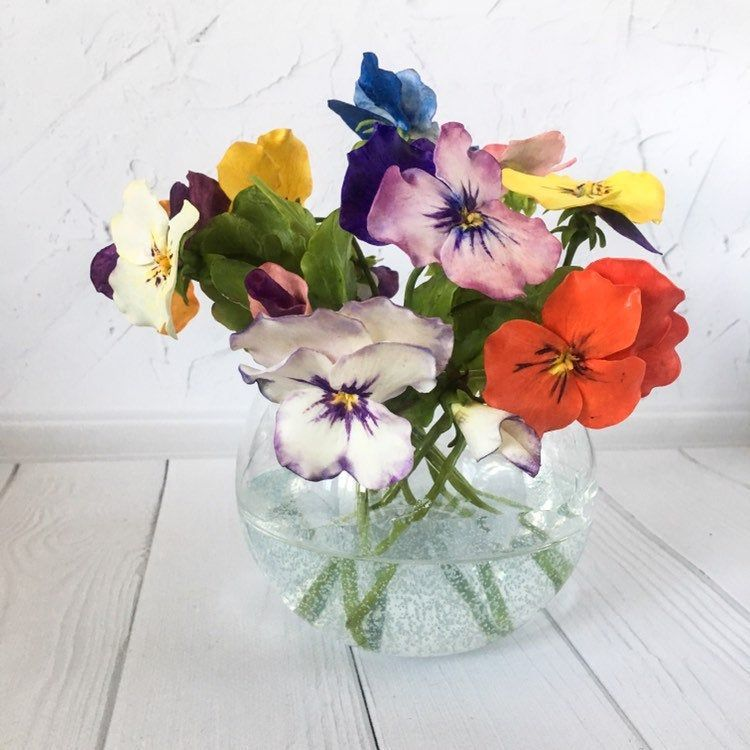 Pansy Flowers In Glass Vase With Faux Water Etsy Cold Porcelain Flowers Contemporary Flower Arrangements Pansies Flowers