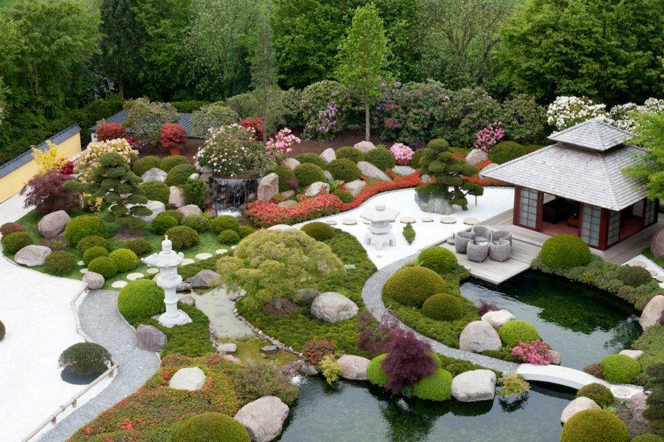 Koi garten koiteich japanischergarten koiteiche - Gartenideen teich ...