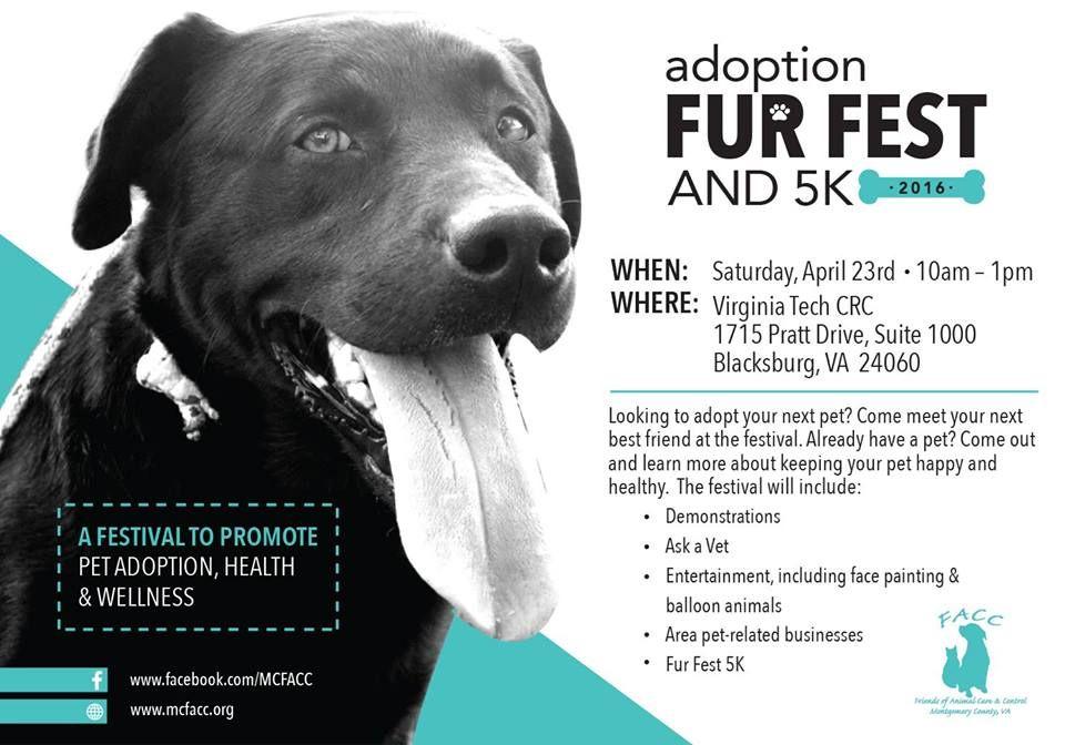 Adoption Fur Fest and 5K 2016 Adoption, Pet care