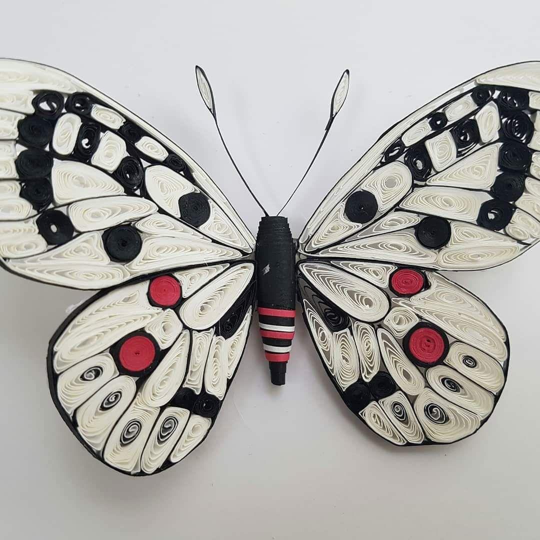 scontent-ams3-1.xx.fbcdn.net v t31.0-8 fr cp0 e15 q65 ... for Quilling Butterfly Tutorial  1lp1fsj