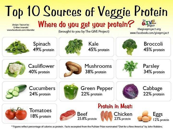 how to increase protien in diet
