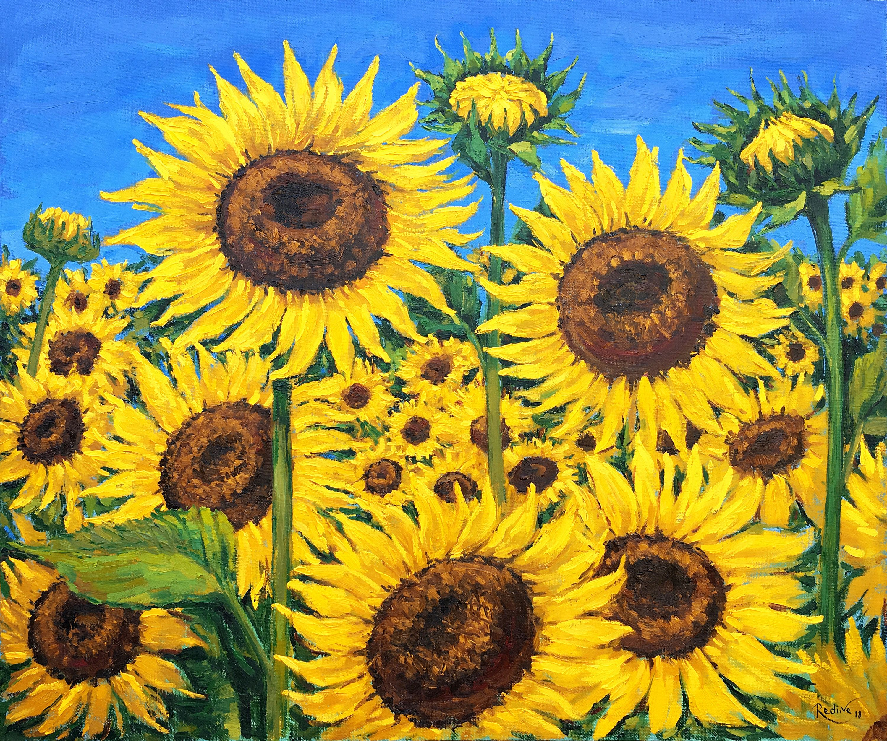 Sunflowers Original Oil Painting On Canvas By Irina Redine From My Etsy Shop Https Etsy Me 2wmbgz Sunflower Wall Art Sunflower Painting Simple Oil Painting