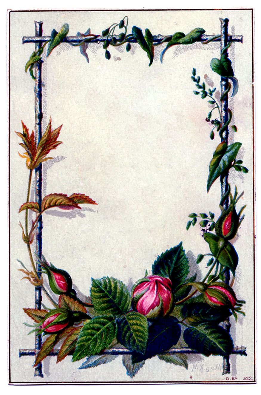 Vintage New Year Clip Art Moss Rose Frame Rose frame