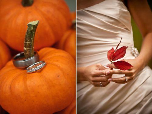 Oh the pumpkin stem :)