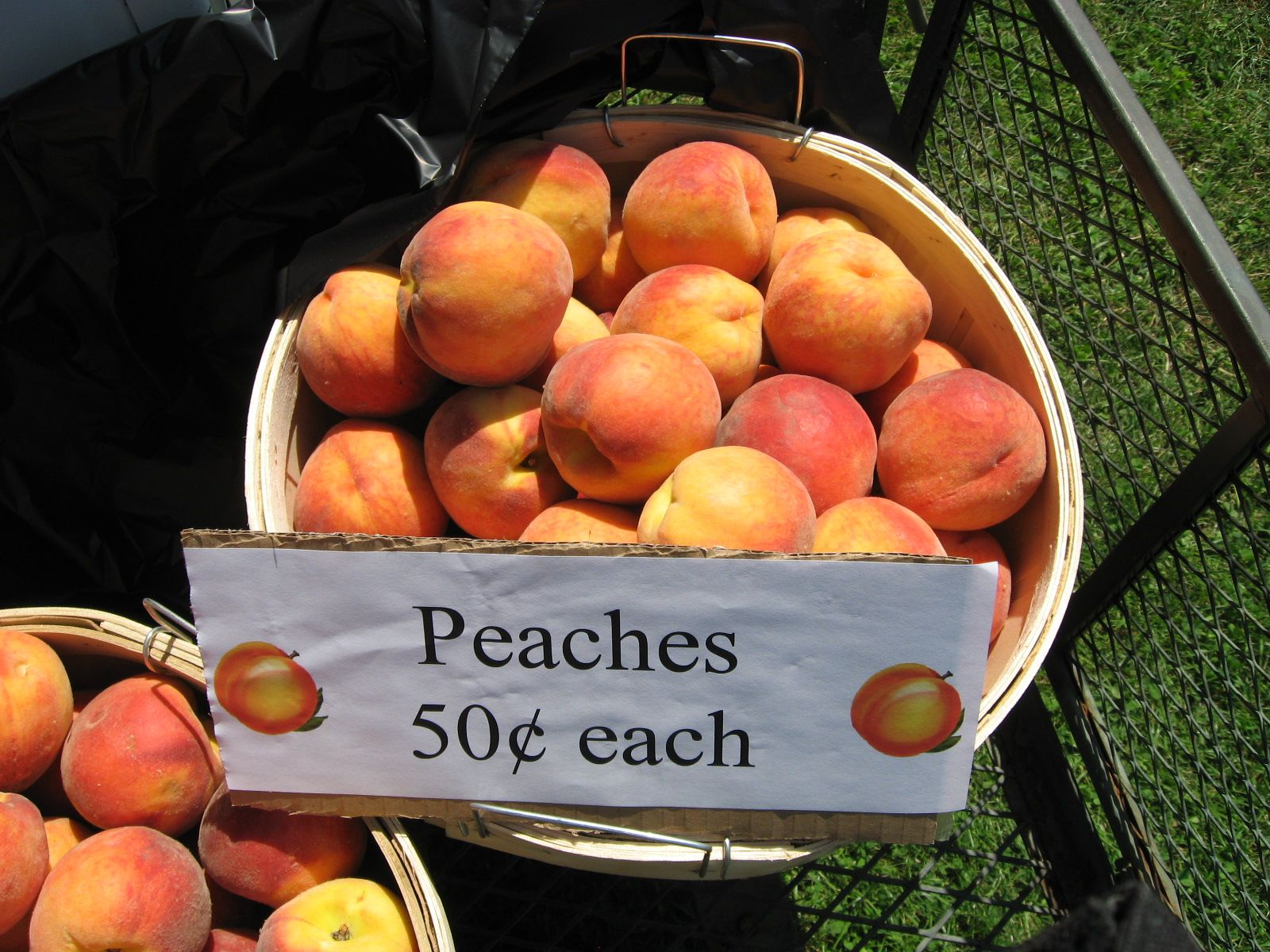Coloma peach festival beautiful day in the neighborhood coloma peach festival buycottarizona Image collections