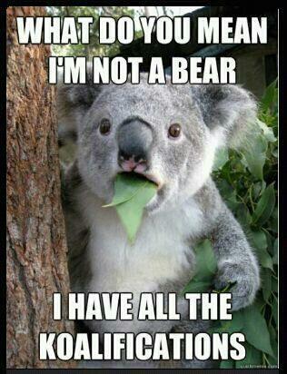 #Koala #Bear? Nah...