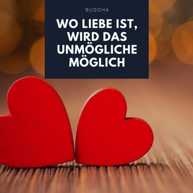 Zitate Uber Liebe Buddha Unmogliche Moglich Spruch Zuneigung