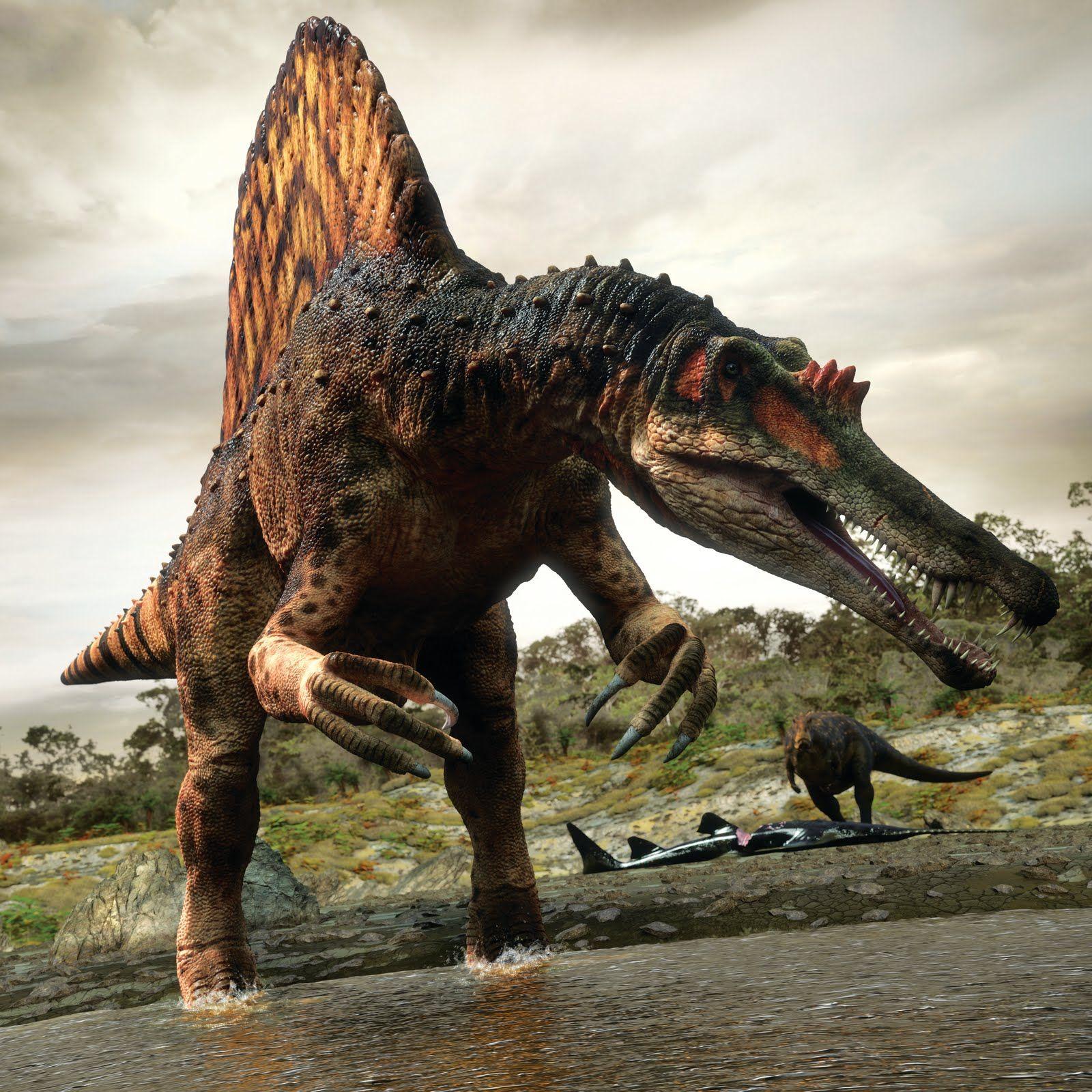 Planet Dinosaur - SPINOSAURUS | Dinosaur | Pinterest | Animales ...