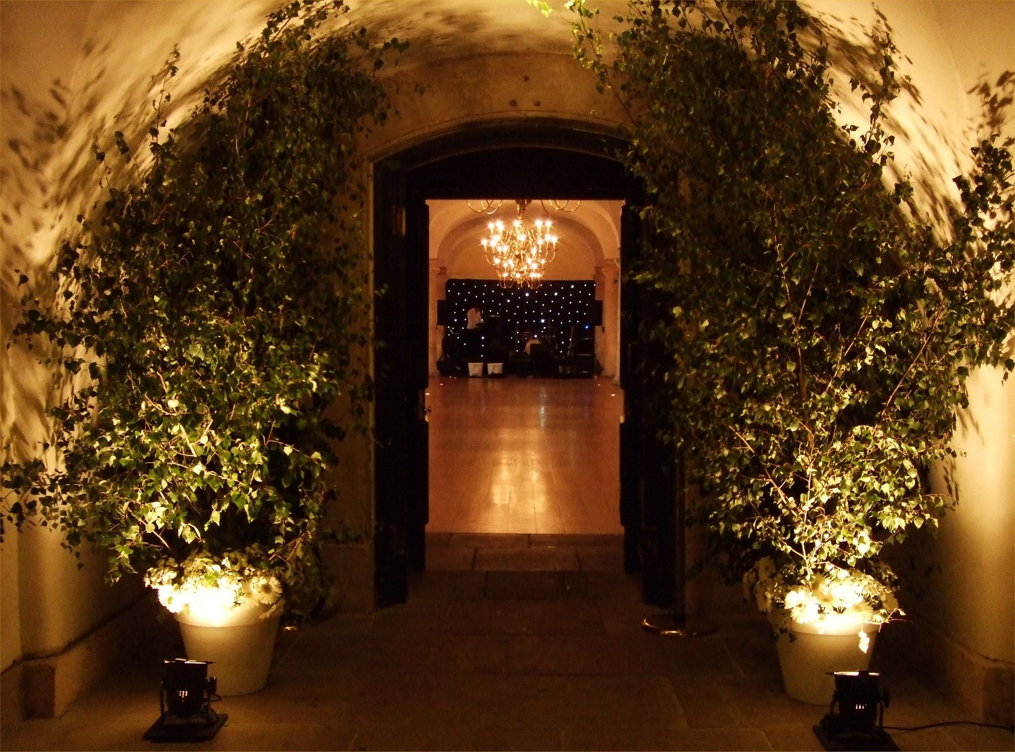Old Royal Naval College London   Uplighters in white, cut birch in pots plus star cloth backdrop by www.stressfreehire.com #venuetransformers