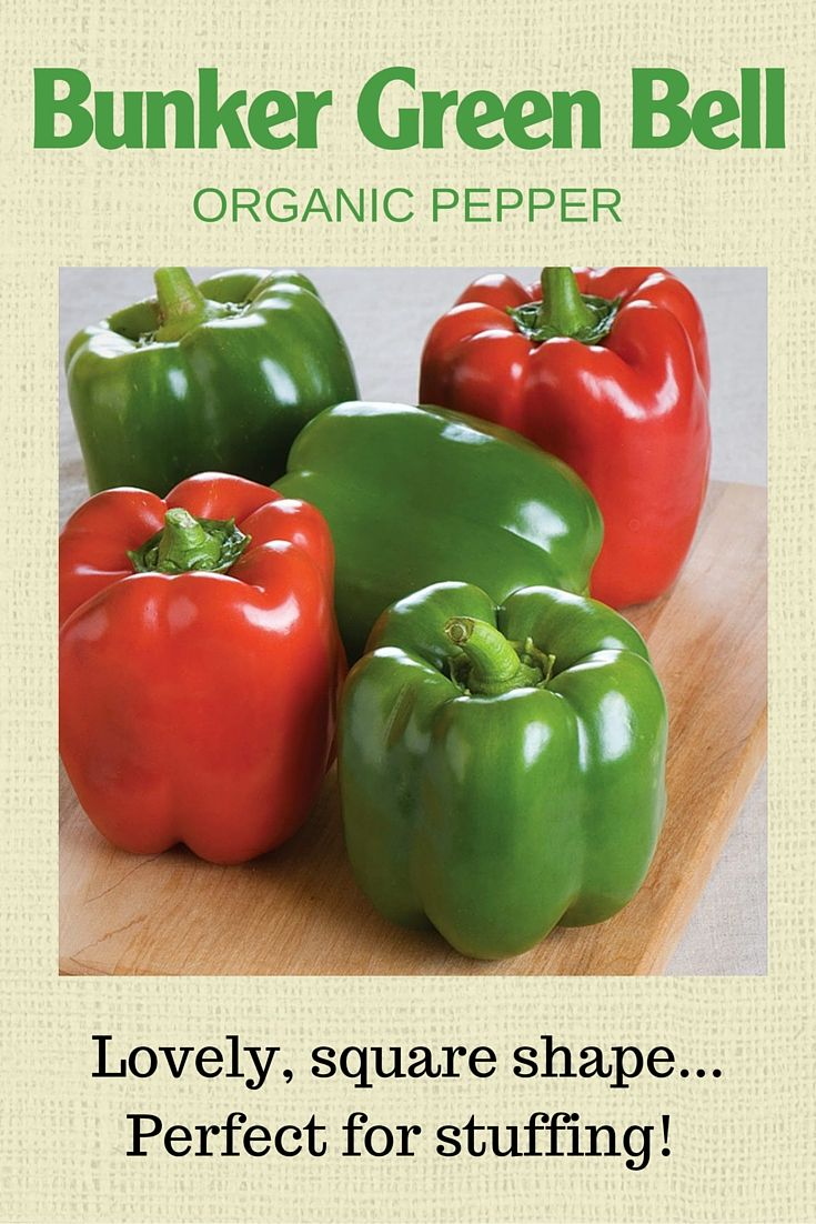 Be The First To Grow Your Own With Bonnie Organics 400 x 300