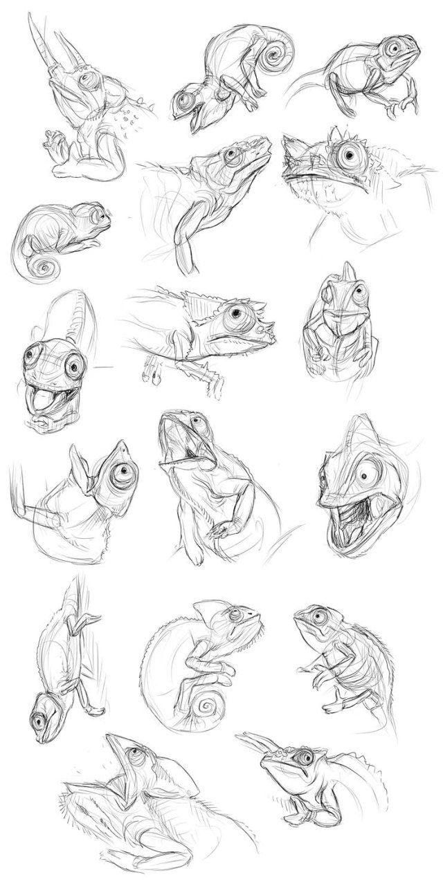 da148ae34 chameleon sketches ottbettina | Sketches | Art, Chameleon tattoo ...