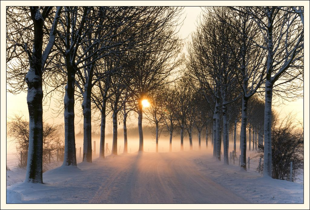 Misty winter afternoon in the Netherlands. Image by Bert Kaufmann: http://www.flickr.com/photos/22746515@N02/5277611659/