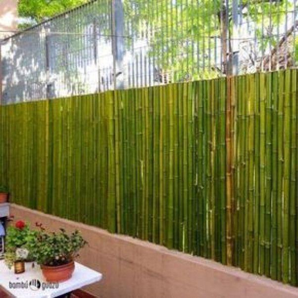 Ideias cercas bambu 8 rooftopgarden rooftop garden