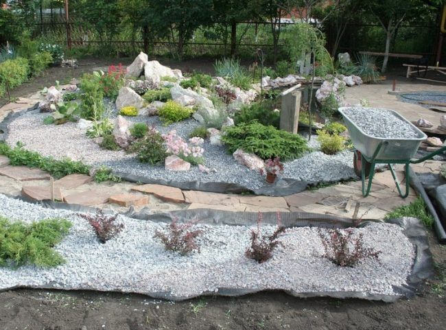 Steinbeet Im Vorgarten Anlegen 12 Ideen Fur Einen Pflegeleichten