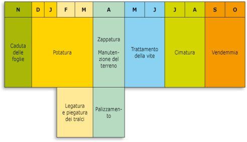 Calendario Vigneto