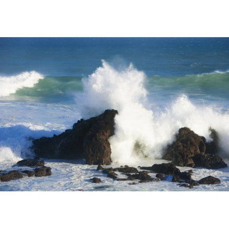 Hawaii Maui Hookipa Big Winter Surf Crashing On Rocks Canvas Art - Ron Dahlquist Design Pics (17 x 12)