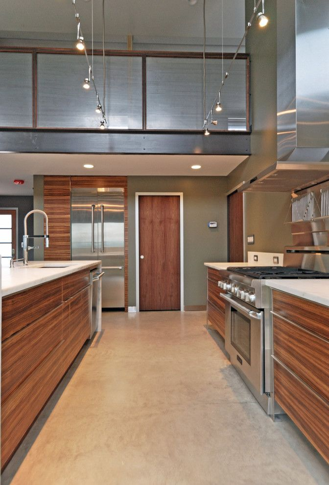 zebra wood cabinets Kitchen Modern with concrete floor low voltage ...