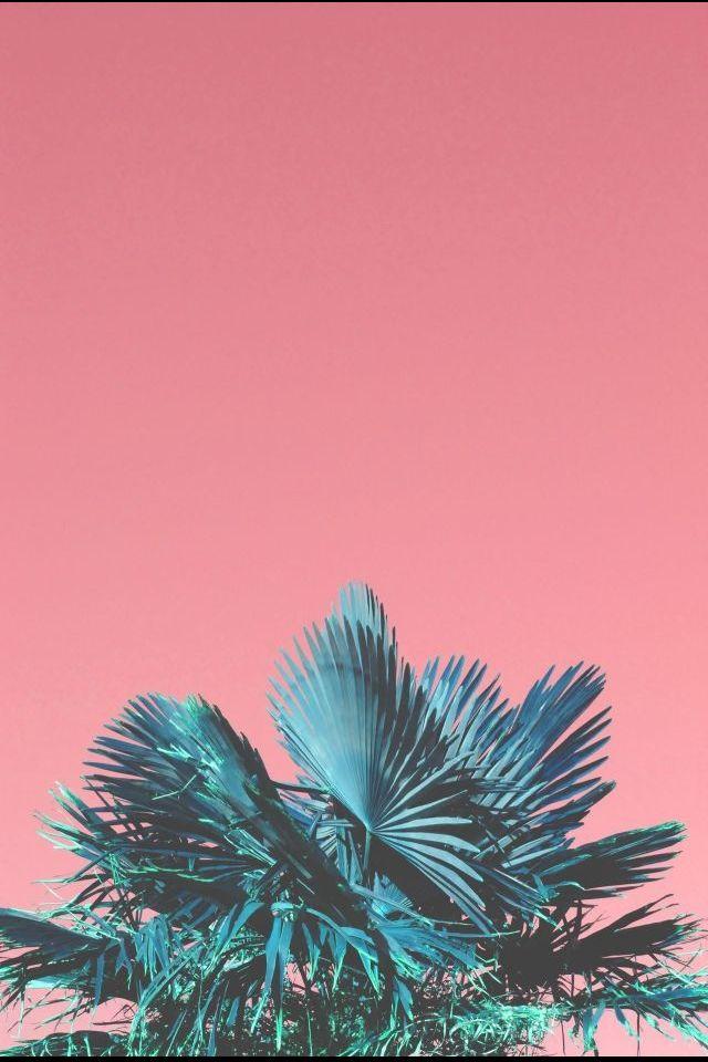 Kitsch palms.