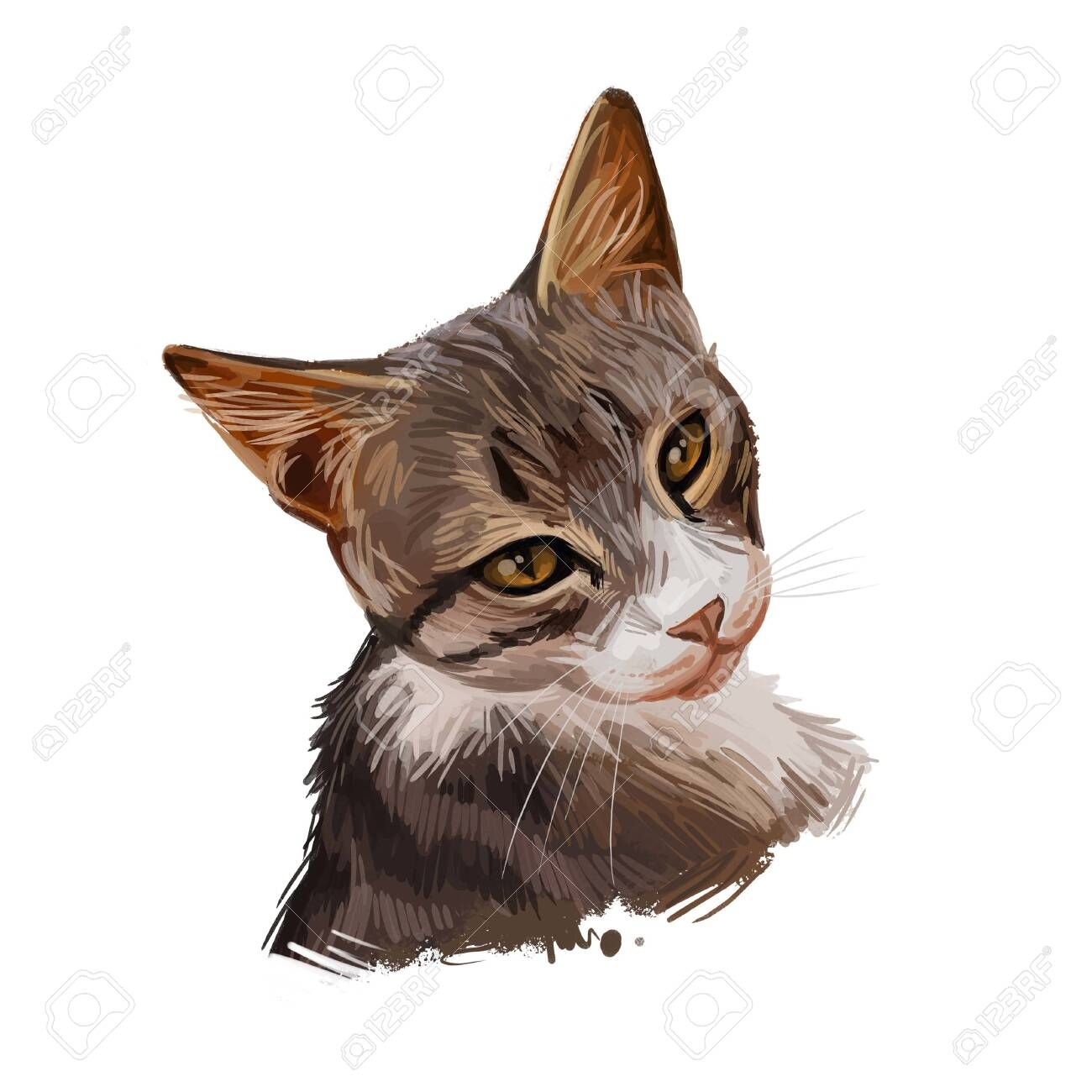 Dragon Li Or Chinese China Li Hua Cat Isolated On White Digital Art Illustration Of Hand Drawn Kitty Fo In 2020 Digital Art Illustration Illustration Art Digital Art