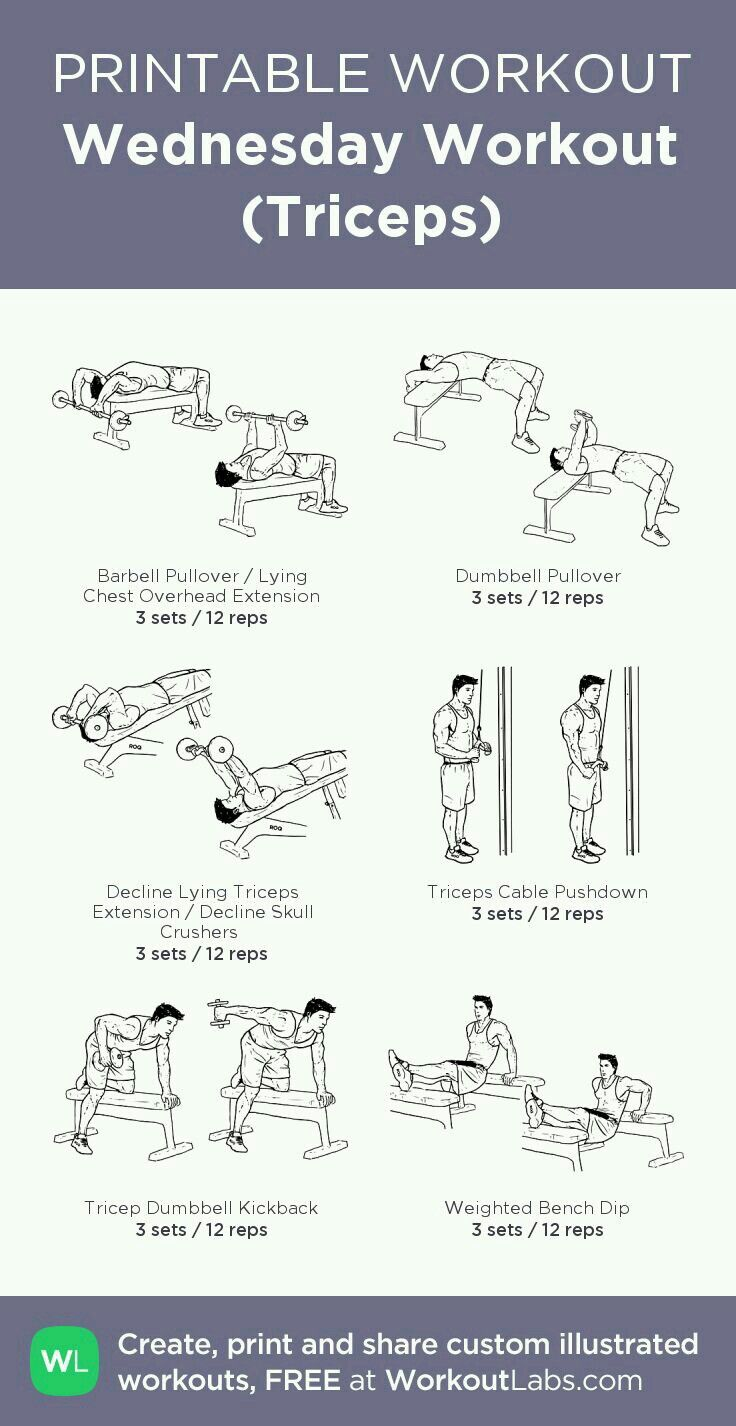 Wednesday- Triceps | Workout | Wednesday workout, Workout, Workout