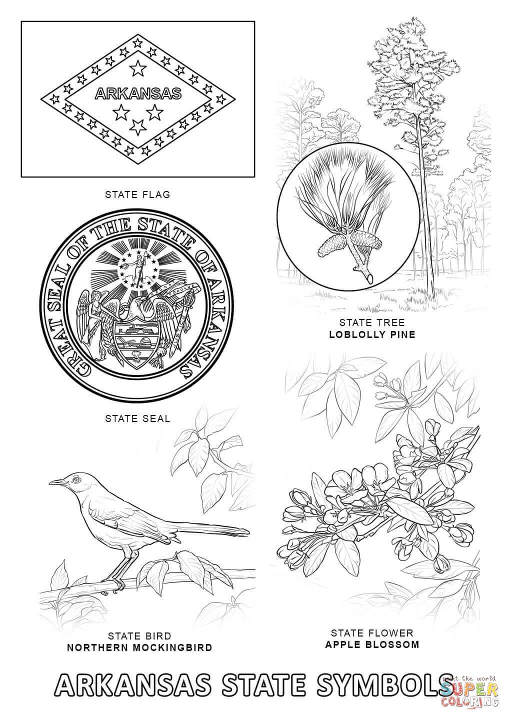 Arkansas State Symbols Super Coloring State Symbols Map Of