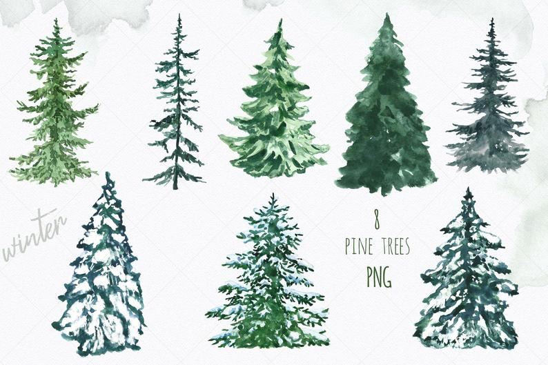 Watercolor Christmas Pine Tree Clip Art Conifer Spruce Forest Etsy In 2020 Christmas Watercolor Watercolor Christmas Tree Watercolor Trees