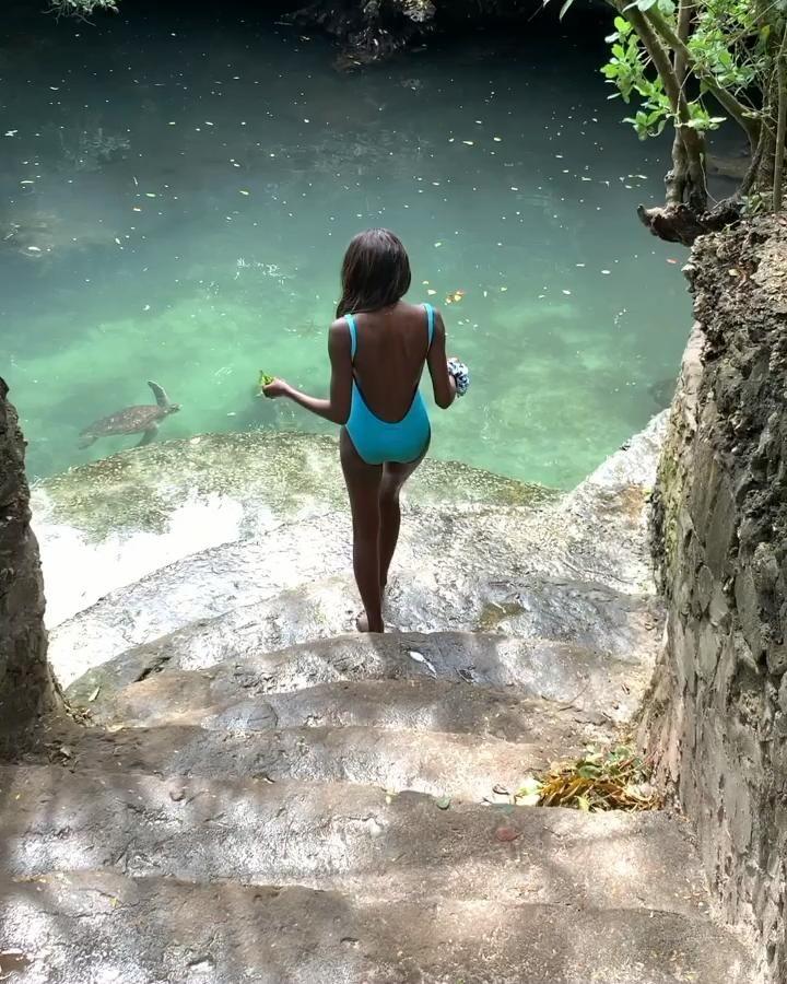 Nourrir les tortues, un rêve    #turtles #zanzibar #travel #sea #beautifuldestination